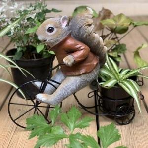Iscg002 Squirrel Bike Planter Copy 2