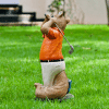 Iscg003 Golf Squirrel Back