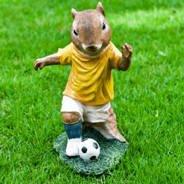 Iscg004 Squirrel Football