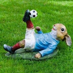 Iscg005 Rabbit Overhead Kick