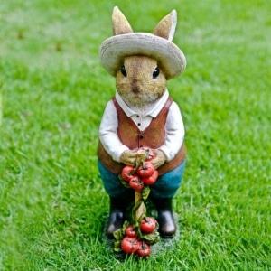Iscg008 Tomato Gardening Rabbit Front