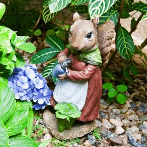 Iscg009 Watering Squirrel Top