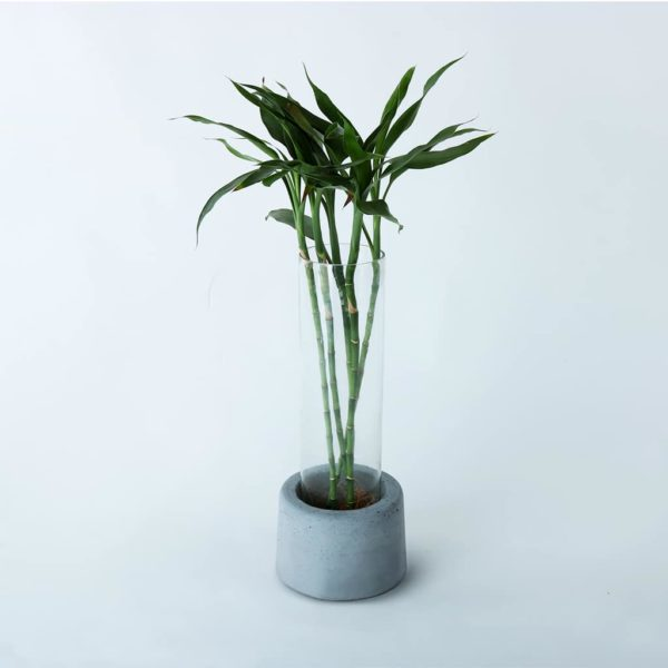 Wonderwheelstore | 31 | Concrete Handmade Big Floor Planter Gmpl003 1